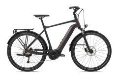 Giant AnyTour E+ 3 GTS Trekking Ebike 2021 | rosewood...