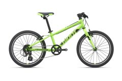 Giant ARX 20 Kinderrad 2021 | green