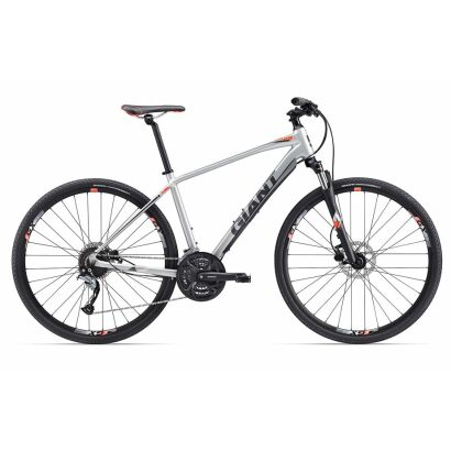 Giant Roam 2 Disc Silver 2017