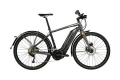 Giant Quick-E+ Fighter Grey 45 km/h 2017