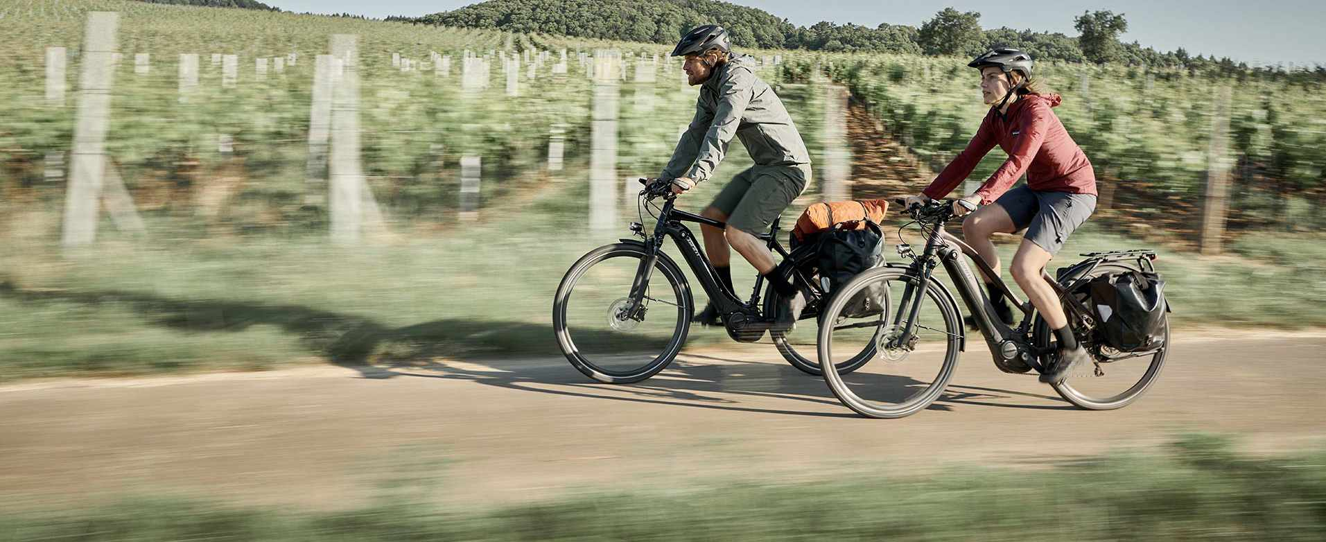 GIANT EXPLORE E Trekking E-Bike